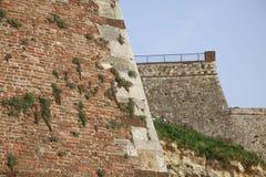 Alte Wand des roten Backsteins mit grünem Gras der Vegetation Stockfotografie