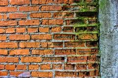 Alte Wand des Schmutzroten backsteins mit Betonmauer und Moos, Beschaffenheit O Stockbild