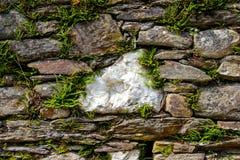Alte Wand hergestellt von den natürlichen Felsen mit großem weißem Stein in der Mitte und mit Anlagen zwischen Blöcken lizenzfreies stockbild
