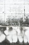 Alte Wand mit Sprungshintergrund Lizenzfreie Stockfotos