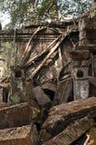 Alte Wand und Baum Stockbild