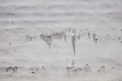 Alte Wand und Gips zogen für Hintergrund ab Lizenzfreie Stockfotos