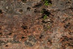 Alte Wand von briks, Hintergrund Stockfotografie