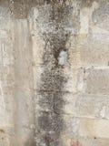 Alte Wand von den Blöcken Stockfoto