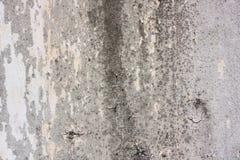 Alte Wandbeschaffenheit Lizenzfreies Stockbild