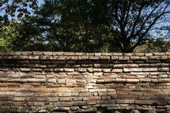 Alte Wandbeschaffenheit/alte Backsteinmauer Stockfoto
