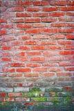 Alte Wandhintergründe des roten Backsteins mit Stelle der Flechte oder des Mooses Lizenzfreie Stockfotografie