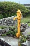 Alte Wasser-Pumpe Stockbild
