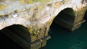 Alte Watermill-Säulengänge Stockbild
