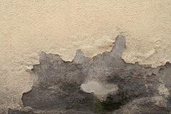 Alte weiß-gemalte Wand mit Form befleckt als abstrakter Hintergrund Lizenzfreie Stockbilder