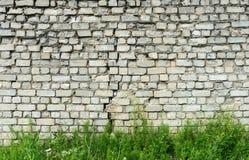 Alte weiße Backsteinmauer mit Sprung und grünem Gras Stockbilder