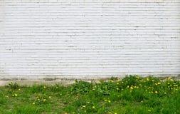 Alte weiße Backsteinmauer und Gras Lizenzfreie Stockfotos