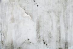 Alte weiße Betonmauerbeschaffenheit Stockbilder
