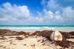 Alte weiße Boje des Fischernetzes legt auf den Strand Stockfotos