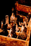 Alte Wein-Flaschen im hölzernen Rahmen Stockbilder