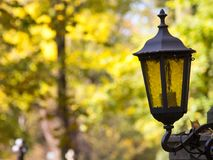 Alte Weinlesemetalllaterne auf Herbstbaumhintergrund Lizenzfreie Stockbilder