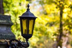 Alte Weinlesemetalllaterne auf Herbstbaumhintergrund Lizenzfreies Stockbild