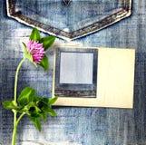 Alte Weinlesepostkarte mit schönem rosa Klee auf Blue Jeans Stockbilder