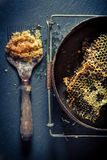 Alte Werkzeuge für Imkerei mit Bienenwabe Lizenzfreie Stockfotografie