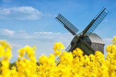 Alte Windmühle auf einem Gebiet des Rapssamens Stockbilder