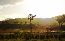 Alte Windmühle in der ländlichen Landlandschaft am Sonnenunterganghinterland Australien Lizenzfreies Stockbild