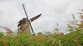 Alte Windmühle in Kinderdijk stock video footage