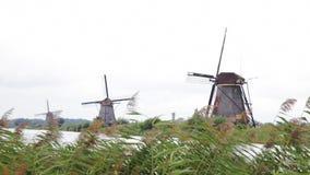 Alte Windmühlen von Kinderdijk, die Niederlande stock video