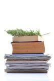 Alte Zeitschriften und Bücher Lizenzfreies Stockbild