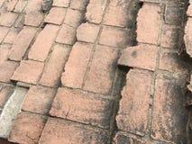 Alte Zementziegelstein-Bodenbeschaffenheit im Garten Lizenzfreies Stockfoto