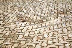 Alte Zementziegelstein-Bodenbeschaffenheit im Garten Lizenzfreies Stockbild