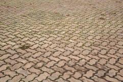 Alte Zementziegelstein-Bodenbeschaffenheit im Garten Lizenzfreie Stockfotografie