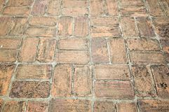 Alte Zementziegelstein-Bodenbeschaffenheit im Garten Stockfotografie