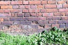 Alte zerbröckelnde Backsteinmauer und Gras Lizenzfreies Stockfoto