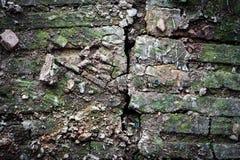 Alte Ziegelsteinruinen mit dem Moos bedeckt Stockbilder