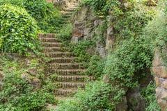 Alte Ziegelsteintreppe in den Grünpflanzen Lizenzfreies Stockfoto
