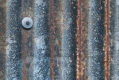 Alte Zinkplatte mit einem Nagel Lizenzfreie Stockfotografie