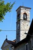 alte Zusammenfassung sonniger Tages-Mailands in der BaumKirchturmglocke Stockbild