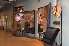 Alte zuverlässige Besucher-Mitte an Yellowstone Nationalpark in Wyoming Stockfotografie