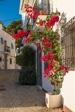 Altea old town. Charming Altea old town street with its whitewashed facades Stock Photography