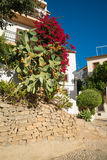 Altea Stock Image