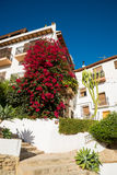 Altea Royalty Free Stock Photography