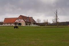 Altefeld Stud Farm in Hesse. The Altefeld Stud Farm in Hesse stock image