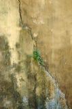 Alter abstrct Betonmauerhintergrund Stockfotografie