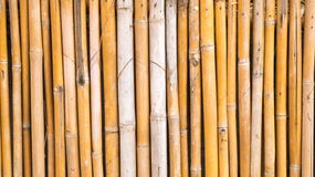 Alter Bambus Lizenzfreie Stockfotografie