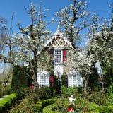Alter Bauernhof mit Bäumen in der Blüte Stockbild