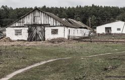Alter Bauernhof, verlassener Schutz für Viehbestand stockfotografie