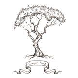 Alter Baum mit der Bandfahnenhand gezeichnet Stockbilder