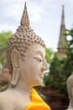 Alter Buddha in Ayutthaya, Thailand Lizenzfreie Stockfotografie
