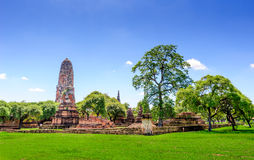 Alter Buddha-Tempel in Ayutthaya, Thailand Lizenzfreie Stockfotografie