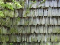 Alter Cedar Barn Shingles mit Rebe Stockfotos